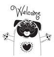 with joyful pug who says - welcome vector image