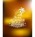 Summer Holidays poster design vector image vector image