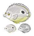 Four Eye Butterfly Fish vector image