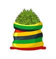 rasta sack of cannabis large bag of marijuana for vector image