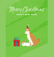 christmas and new year holiday shiba inu dog card vector image