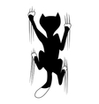 climbing cat vector image
