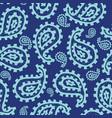 paisley seamless pattern vector image