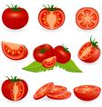 Icon Set Tomato vector image vector image