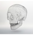 White polygonal skull on white studio background vector image