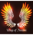 Wings Sketch vector image