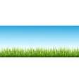 Grass and the sky vector image