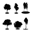 Set of Tree Silhouette Isolated on White vector image vector image