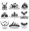 set of forest theme emblems Vintage badges vector image