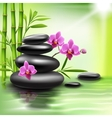 Realistic spa background vector image