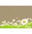 bright chamomile field vector image vector image