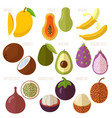 exotic tropical flat design fruits vector image