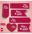 Set of bubbles stickers labels tags Big Sale vector image
