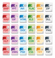 File document icons3 vector image