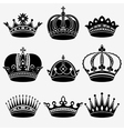 Set of nine crown vector image