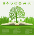 Ecology info graphics modern design green tree vector image