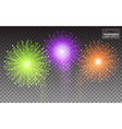 Festive Brightly Colorful Fireworks and Salute vector image