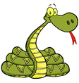 Snake Cartoon Character vector image