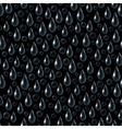 Drops on Black Seamless vector image