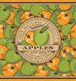 vintage apple label on seamless pattern vector image