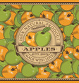 vintage apple label on seamless pattern vector image
