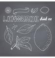 Set of hand drawn lemonade ingredients vector image