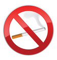 no smoking symbol inscription of cigarettes on vector image