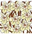 vanilla flower pattern vector image