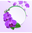 Banner with Purple Orchids vector image