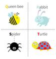 Letter Q R S T Queen bee Rabbit Spider Turtle Zoo vector image
