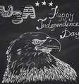 American Bald eagle and drum with drumstiks USA vector image