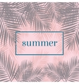 Summer poster Palm leaves background Modern vector image vector image