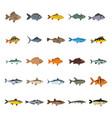 fish set flat icons vector image