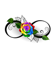 Infinity Symbol with Rainbow Rose vector image
