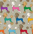 Seamless pattern of poodle dogs vector image