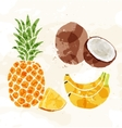 Set of colorful fresh fruit stains vector image