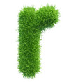 small grass letter r on white background vector image
