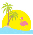 pink flamingo standing on one leg two palms tree vector image