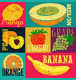 pop art grunge style fruit poster set of fruits vector image