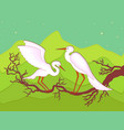 pair of storks on a branch vector image