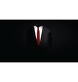 suit in dark vector image vector image