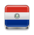 Metal icon of Paraguay vector image vector image
