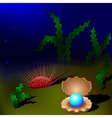 pearl in the shell undersea vector image