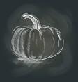 pumpkin on the blackboard vector image