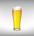 Glass of light beer vector image