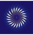 Firework ornament vector image