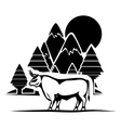 Isolated bull animal design vector image