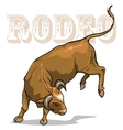 Rodeo Bull Isolated vector image
