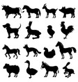 animals from farm vector image