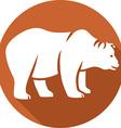 Wild Bear Icon vector image vector image